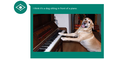 Caption - Txakurra pianoan