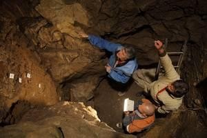 Ama neandertala eta aita denisovarra zituen neska bat identifikatu dute