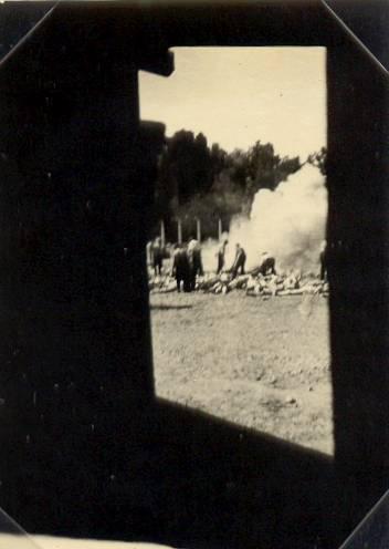 Auschwitzeko lau argazkiak