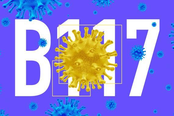 B117 anduia: pandemia berria dator pandemiaren barruan