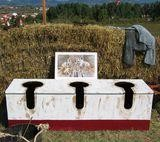 Veleiako 2004. urteko komunetako kasua