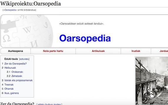 Oarsopedia, Oarsoaldea eduki librez betetzeko