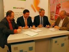 Hamaika Euskaltel digitaleko 11. kanalean sintonizatuko da Bizkaian; Araba eta Gipuzkoan, 911ean