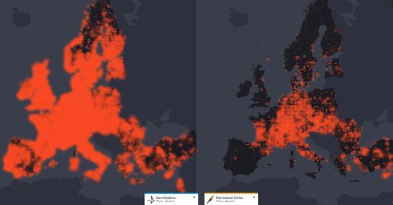 EBP mapa dinamikoak hegaztien migrazioa