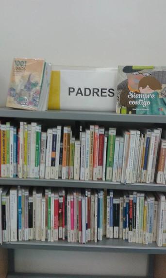 San Pedroko liburutegiko kartelen afera amaitzen ari da.