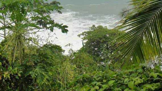 Costa Ricak erregai fosilak debekatuko ditu bere lurraldean 2020. urterako