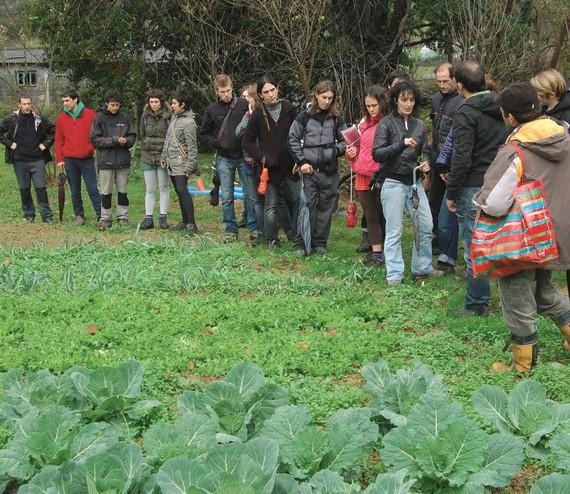 Agroekologia: trantsiziorako gure bideak lantzen graduondokoa