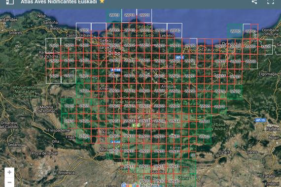 EAEko Atlas Ornitologikoaren datu-bilketa aurrera doa