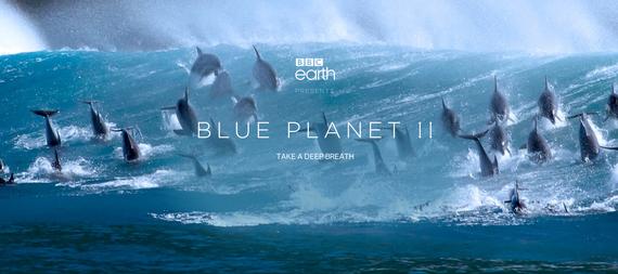 """""""Blue Planet"""" dokumental mitikoa itzuli da, bigarren kapitulu-sortarekin"""