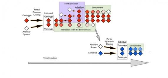 EHUko ikerlariek bizi artifiziala sortu dute, IBMren ordenagailu kuantiko batean